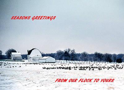 Seasons Greetings Print by Skip Willits