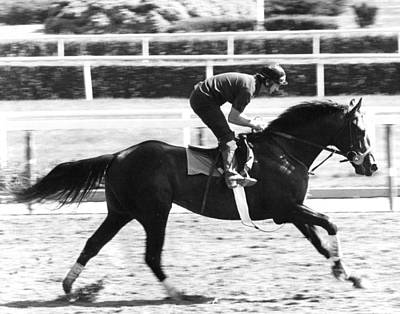 Seattle Slew Horse Racing #02 Print by Retro Images Archive