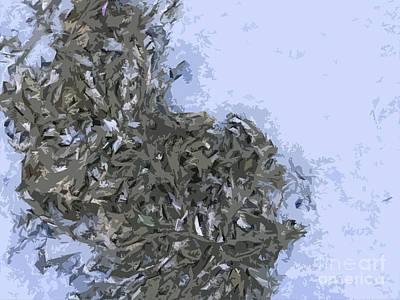 Abstract Forms Digital Art - Seaweed by Carol Lynch