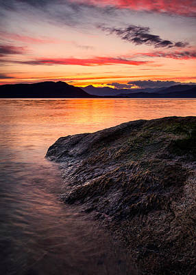 Vancouver Photograph - Seaweed Sunset by Alexis Birkill