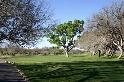 Second Tee Tubac Golf And Resort 9 Hole Course Original by Jack Pumphrey