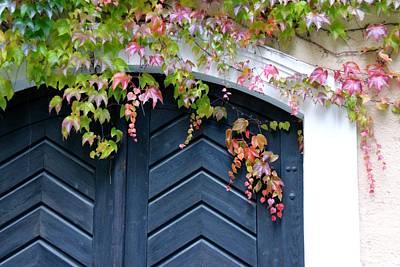 Dooways Photograph - Secret Door by Katrina LeAndro