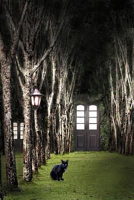 Secret Forest Dwelling Print by Nirdesha Munasinghe