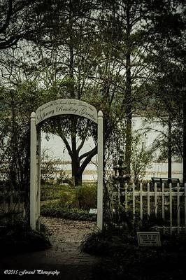 Northwest Library Photograph - Secret Garden  by Debra Forand