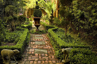 Secret Garden Print by Diana Powell