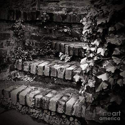Secret Garden Stairs Print by Charmian Vistaunet