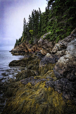 Maine Mountains Photograph - Secret Hideaway by Joan Carroll