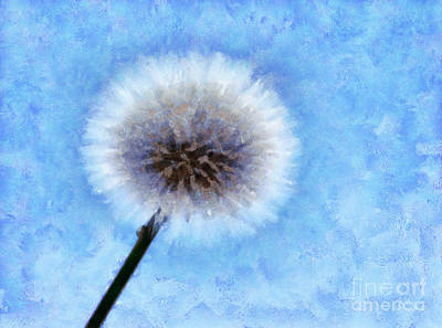 Dandelion Digital Art - Secret Wish by Krissy Katsimbras