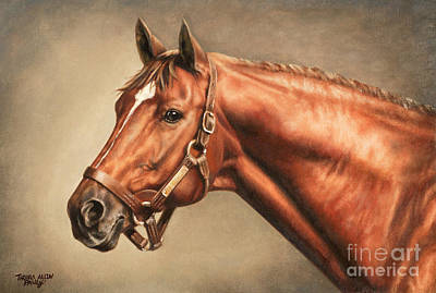 Horse Painting - Secretariat At Claiborne by Thomas Allen Pauly
