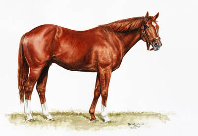 Jockey Drawing - Secretariat Study by Thomas Allen Pauly