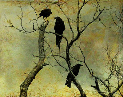 Secretive Crows Print by Gothicolors Donna Snyder