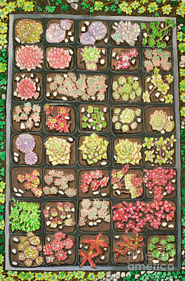 Alternative Medicine Painting - Sedum Sampler by Cora Eklund