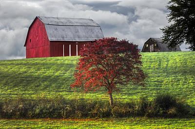 Seeing Red Print by Debra and Dave Vanderlaan