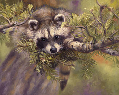 Raccoon Painting - Seeking Mischief by Lucie Bilodeau