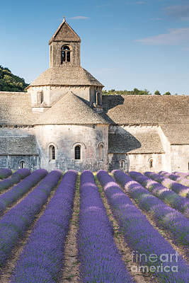 Provence Photograph - Senanque Abbey And Lavender Field In Provence - France by Matteo Colombo