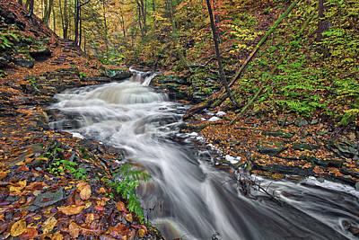 Tree Photograph - Seneca Falls by Marcia Colelli