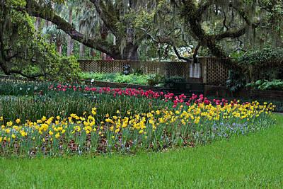 Sensational Springtime - Magical Garden Vi Original by Suzanne Gaff