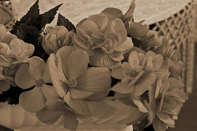 Flower Still Life Photograph - Sepia Begonias by Sandra Foster