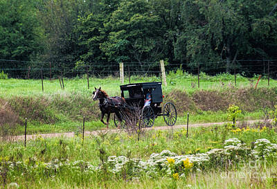 Amish Photograph - September Buggy by David Arment