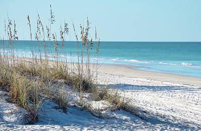 Oat Photograph - Serene Florida Beach Scene by Rebecca Brittain