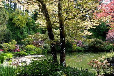 Serene Garden Retreat Print by Carol Groenen