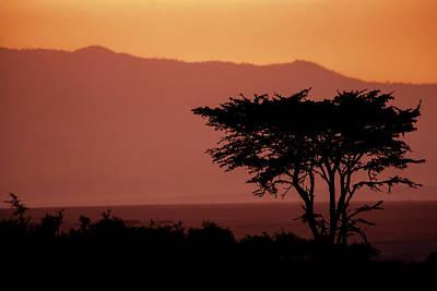 Orange Photograph - Serengeti Sunset by Sebastian Musial