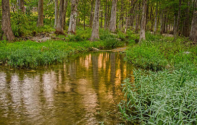 Kerr County Photograph - Serenity by Casey Marvins