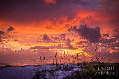 Serenity Print by Marvin Spates