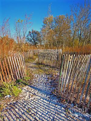 Serenity Trail.... Print by Nina Stavlund
