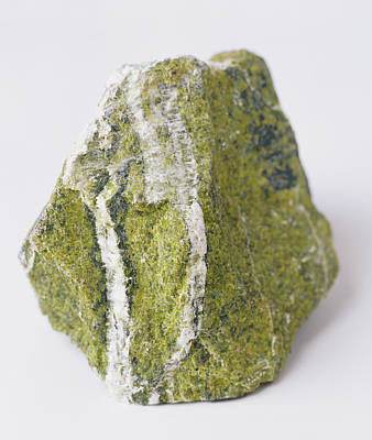 Serpentine Photograph - Serpentine Groundmass With Chrysotile by Dorling Kindersley/uig