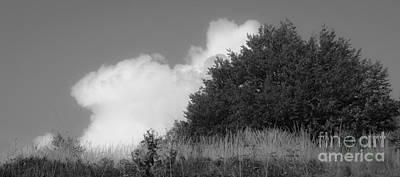 Bieszczady Photograph - Setting Cloud by Agata Wisniowska