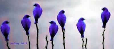 Bird Painting - Seven Birds Of Purple by Bruce Nutting