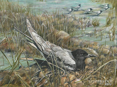 Tern Painting - Seven Black Terns by Rob Dreyer AFC