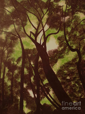 Shade Trees Original by Erica  Darknell
