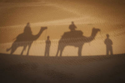 Camel Photograph - Shadow Of Camels With Riders by Alex Adams