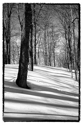 Shadows At Mccauley Mountain Print by David Patterson