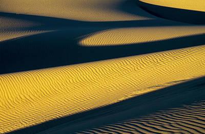 Oregon Dunes National Recreation Area Photograph - Shadows Deepen On A Summer Evening by Robert L. Potts