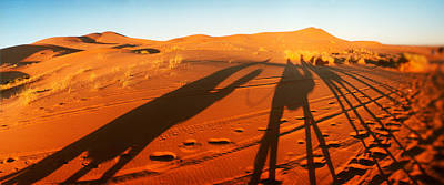 Shadows Of Camel Riders In The Desert Print by Panoramic Images