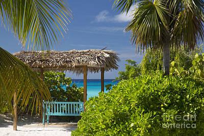 Shady View - Bahamas Print by Brian Jannsen