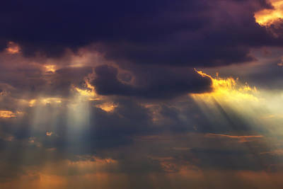 Shafts Photograph - Shafts Of Sunlight by Garry Gay