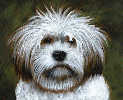 Shaggy ... Dog Art Painting Print by Amy Giacomelli