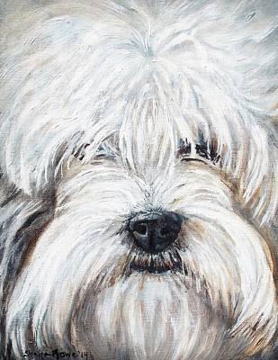 Cocker Spaniel Painting - Shaggy Dog by Shana Rowe Jackson