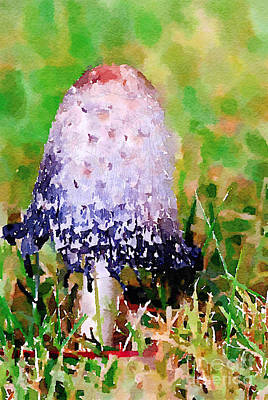 Nature Photograph - Shaggy Ink Cap Mushroom Digital Watercolor by Kerri Farley