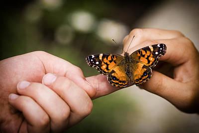 Moth Photograph - Sharing by Adam Romanowicz
