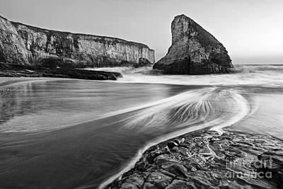 Shark Fin Cove At Dusk. Print by Jamie Pham