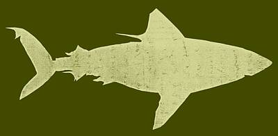 Shark Drawing - Shark by Michelle Calkins