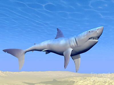 Underwater View Digital Art - Shark Swimming Underwater by Elena Duvernay