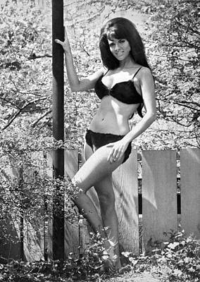 Fashion Model Photograph - Sharon Harvey (miss Tanya Suntan Lotion) Sunning Herself In Ny's by Underwood Archives