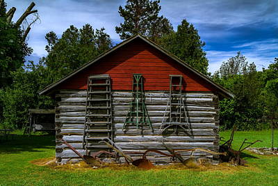 Shed And Fruit Ladders Print by Chuck De La Rosa