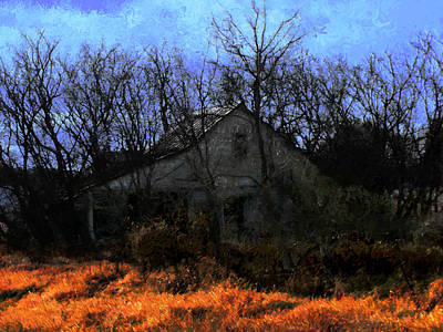 Shed In Brush On Hwy 49 North Of Waupaca Print by David Blank